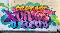 graffiti pola igualdade da xuventude de aranga